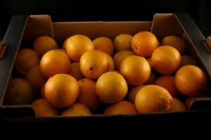 naranjas-ecologicas